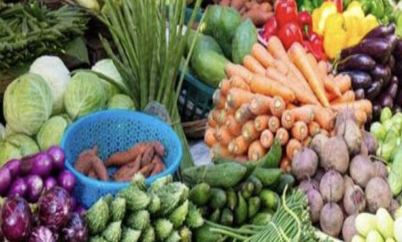 """""""果物と野菜から受けるわたしにとっての恩恵"""""""
